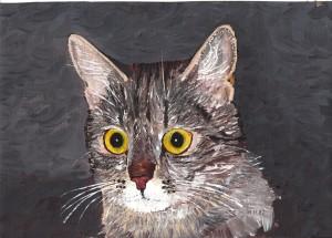 Namenlose Katze
